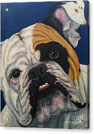 Humphrey Acrylic Print