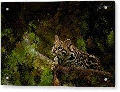Hunter Acrylic Print by Marina Likholat
