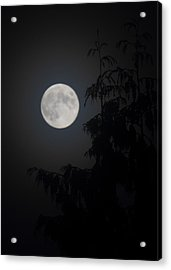 Hunters Moon Acrylic Print by Randy Hall