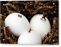 Hunting In Nest Little People On Food Acrylic Print by Paul Ge
