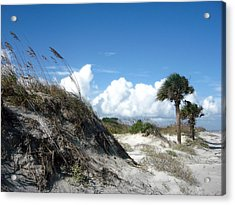 Hunting Island - 9 Acrylic Print by Ellen Tully