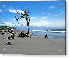 Acrylic Print featuring the photograph Hunting Island - 1 by Ellen Tully