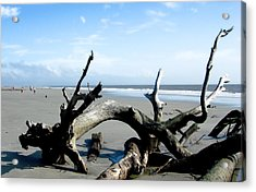 Acrylic Print featuring the photograph Hunting Island - 2 by Ellen Tully