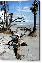 Acrylic Print featuring the photograph Hunting Island - 3 by Ellen Tully