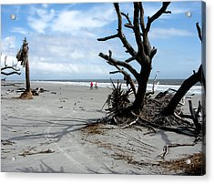 Acrylic Print featuring the photograph Hunting Island - 5 by Ellen Tully