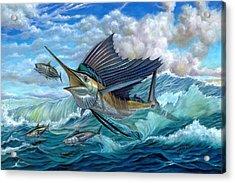 Hunting Sail Acrylic Print