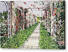 Huntington Rose Arbor Acrylic Print by David Lloyd Glover