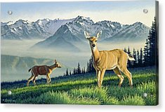Hurricane Ridge-blacktails Acrylic Print by Paul Krapf
