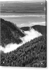 Hurricane Ridge Acrylic Print
