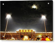 Hutto Hippo Stadium Acrylic Print by Trish Mistric