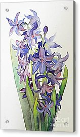 Acrylic Print featuring the painting Hyacinthus by Shirin Shahram Badie