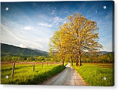 Hyatt Lane Cade's Cove Great Smoky Mountains National Park Acrylic Print