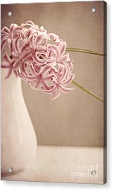 Hyazinth In A Vase Acrylic Print