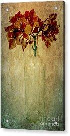 Hydrangea Acrylic Print by Elena Nosyreva