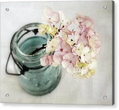 Acrylic Print featuring the photograph Hydrangea In Vintage Robin's Egg Jar by Brooke T Ryan