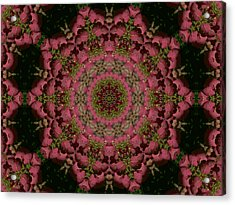 Acrylic Print featuring the photograph Hydrangea Mandala Mauve by MM Anderson