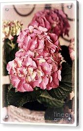 Hydrangea On The Veranda Acrylic Print