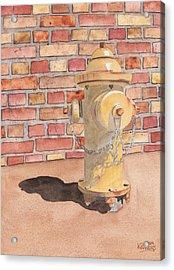 Hydrant Acrylic Print by Ken Powers