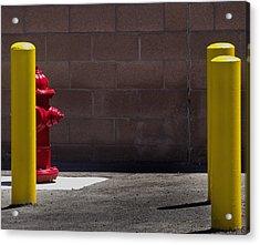 Hydrant Acrylic Print by Kevin Duke