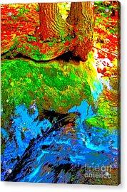 Hyper Childs Y53 Acrylic Print by George Ramos