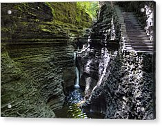 Acrylic Print featuring the photograph Hypnotic Magic Of Watkins Glen  by Gene Walls