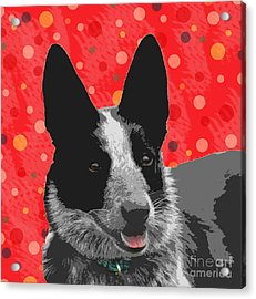 I Am All Ears Acrylic Print by Nola Lee Kelsey