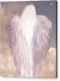 I Am Love Acrylic Print by David M ( Maclean )