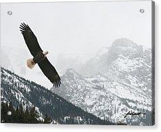 I Am The Eagle Acrylic Print