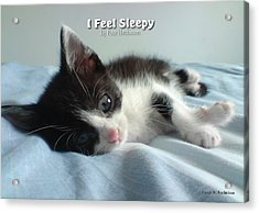 I Feel Sleepy Acrylic Print