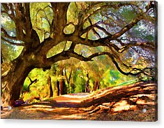 I Gave My Word To This Tree Acrylic Print
