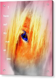 I Have Set My Eye On You, But I Have To Let You Go  Acrylic Print by Hilde Widerberg