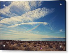 I Hope And I Dream Acrylic Print by Laurie Search