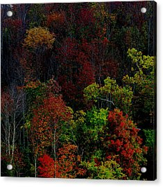 Acrylic Print featuring the photograph I Love October by Eric Switzer