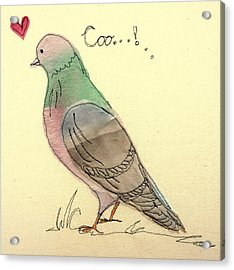 Pigeon Fancier Acrylic Print by Hazel Millington