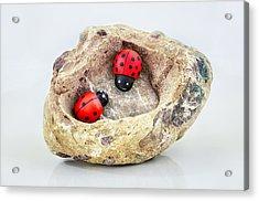 I Love You - Says Ladybugs Acrylic Print by Gynt