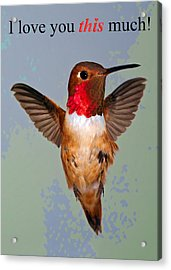 Acrylic Print featuring the photograph I Love You This Much by Gregory Scott