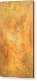 Intuition Acrylic Print by Brooks Garten Hauschild