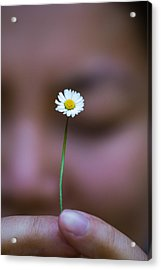I Praise Thee Daisy Acrylic Print by Mike Lee