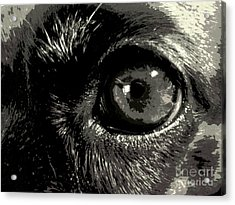 I See She Acrylic Print by Isabelle Holt