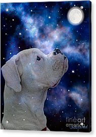 I See The Moon Acrylic Print by Judy Wood