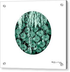I See Them Run Acrylic Print by Xoanxo Cespon