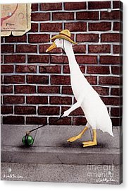 I Walk The Lime... Acrylic Print by Will Bullas
