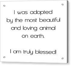 I Was Adopted 1 Acrylic Print