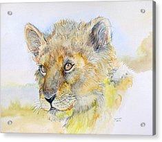 I Will Be The Lion King Acrylic Print by Janina  Suuronen