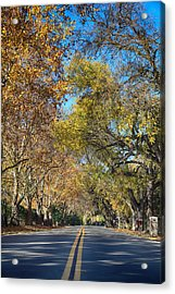 I Will Follow Acrylic Print by Laurie Search