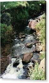 Rocky Stream In Iao Valley Acrylic Print