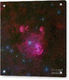 Ic 2944, A Large H II Region Acrylic Print by Robert Gendler