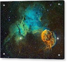 Ic443 - The Jellyfish Nebula Acrylic Print by Bob  Franke