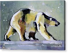Ice Bear Acrylic Print by Mark Adlington