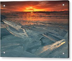 Ice Collage Acrylic Print by Gregory Israelson